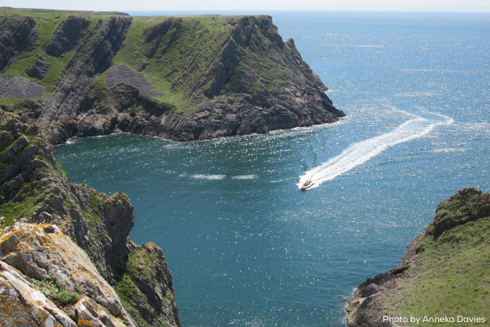 beautiful gower scenery boat trip