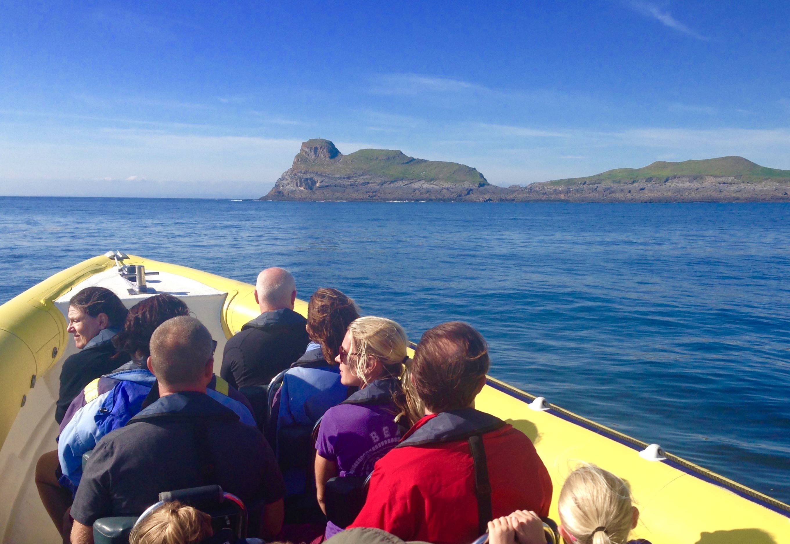 Worms Head Gower boat trip